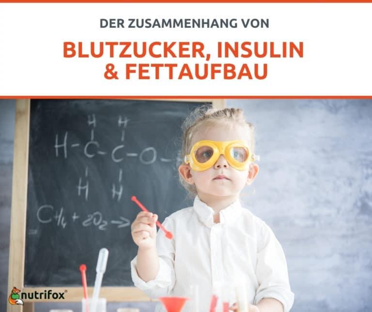 Blutzucker Insulin Fettaufbau